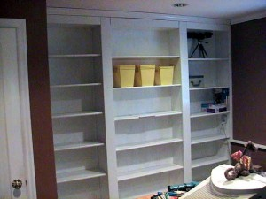 Bookshelf Door Project