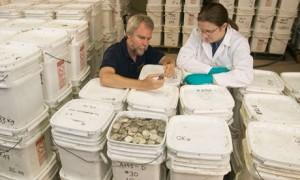 Spanish $500 million silver and gold lost treasure