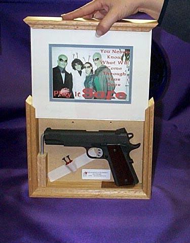Frame Gun Safe