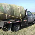 Hidden Stash in Hay Bale on Truck
