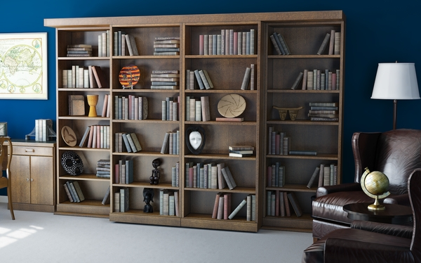 Secret Sliding Bookcshelf Doors Conceal Murphy Bed