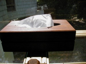Hidden Compartment in Tissue Box Cover