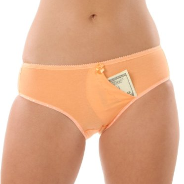 Secret Stash Pocket in Panties