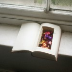 Homemade Hollow Book Storage