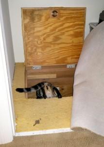Trap Door to Hidden Room