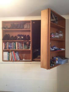 Basement Passage Through Bookcase Door